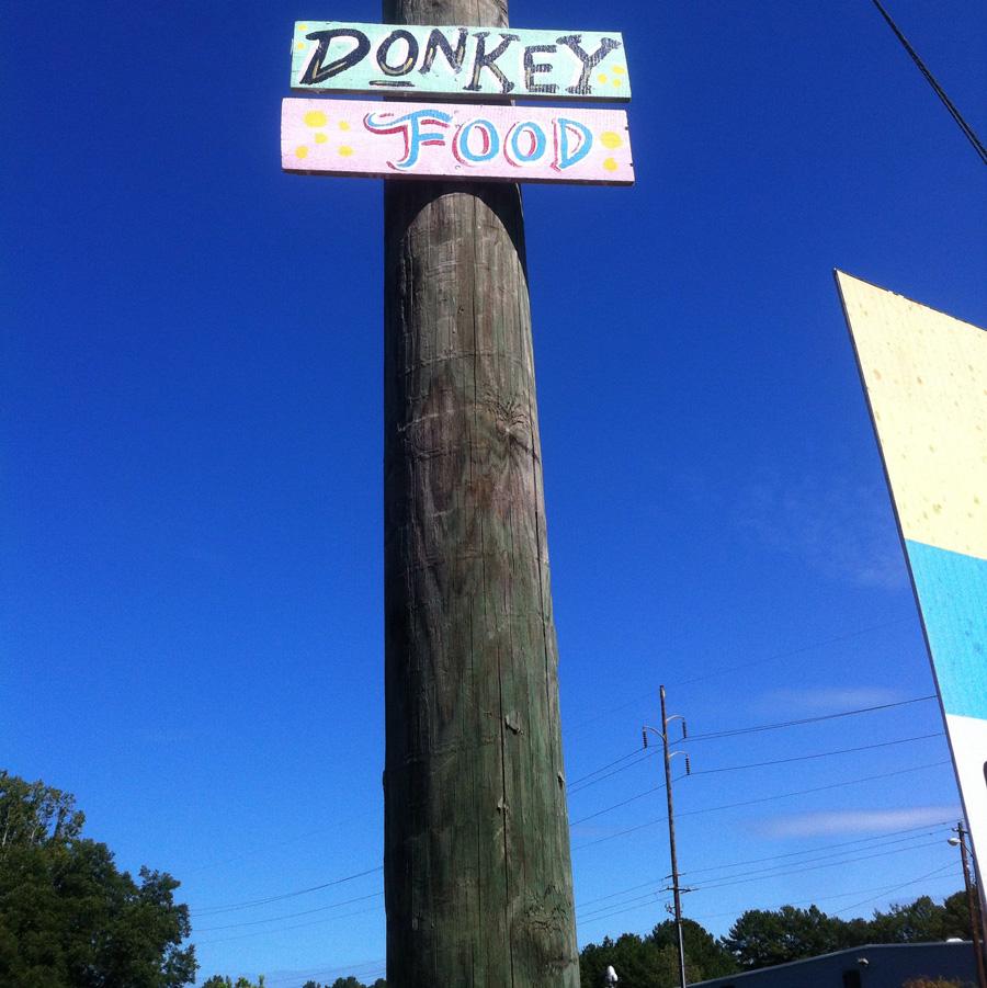 donkey-food-street-poem-a-blackcattips