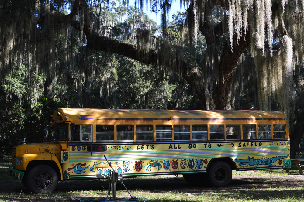 sapelo painted bus - blackcattips - 195