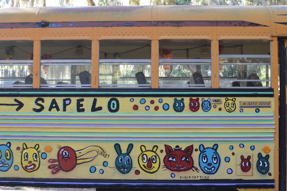sapelo painted bus - blackcattips - 75