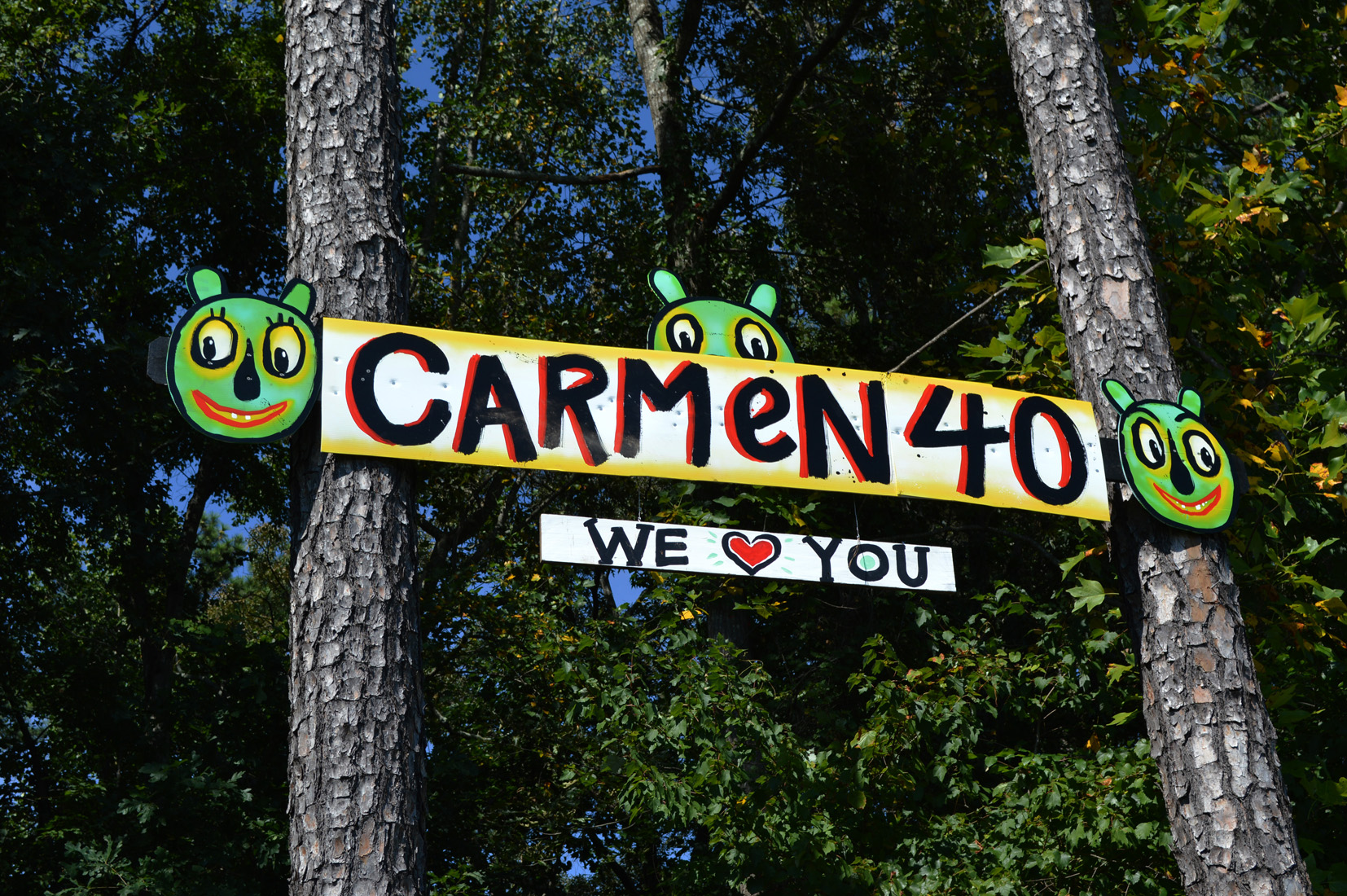 carmen40 streetfolk sign blackcattips - 1 folk art roadside georgia