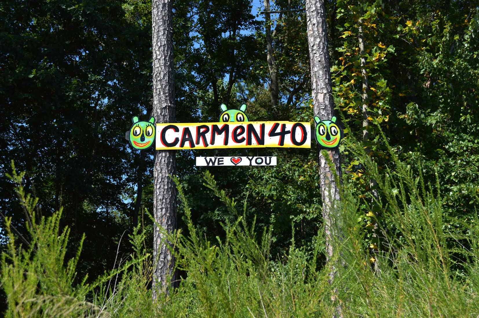 carmen40 streetfolk sign blackcattips - 3 folk art roadside georgia