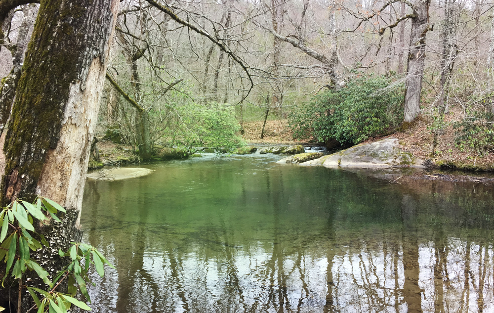 Hambidge-betty-creek-rabun-county