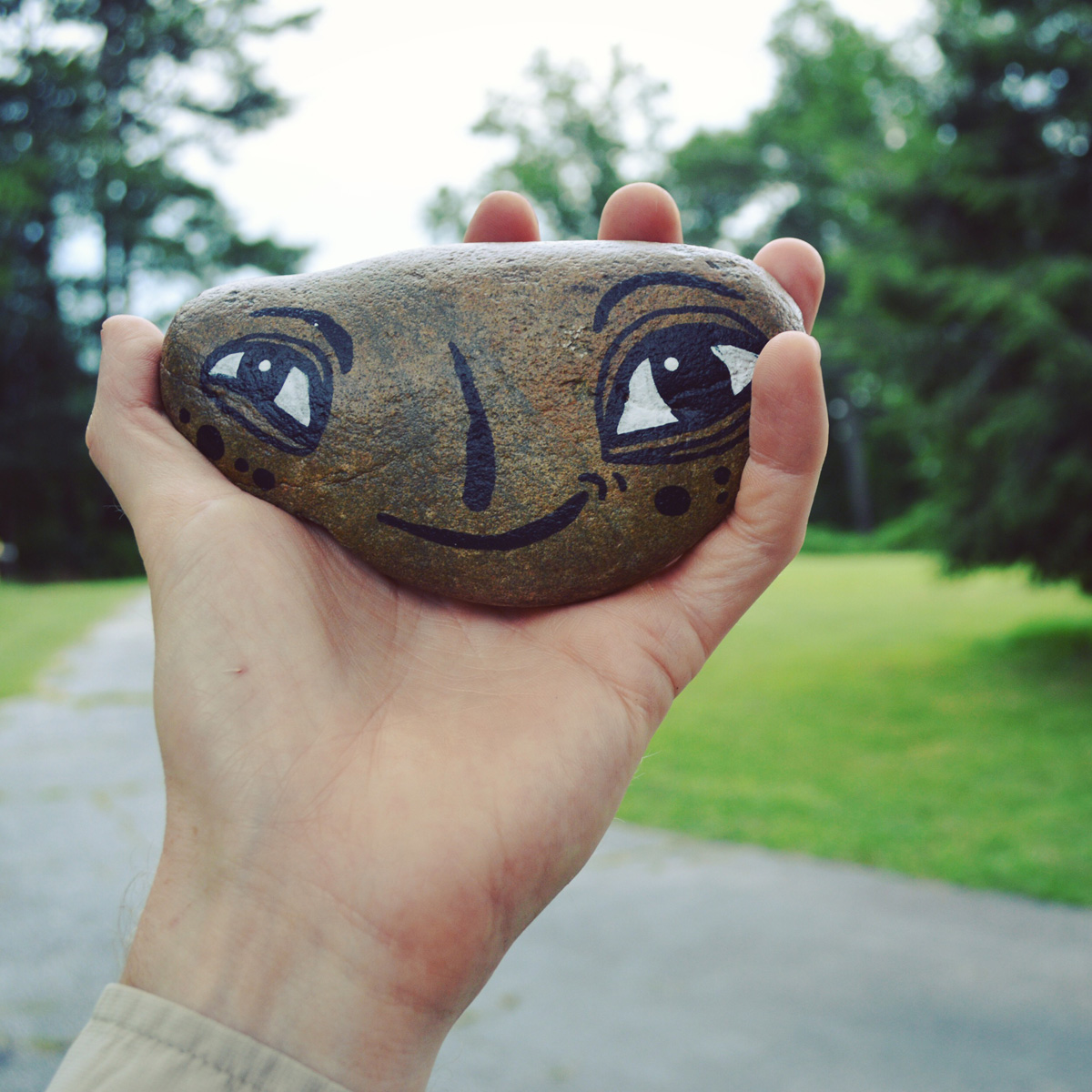 - BlackCatTips painted stones rocks faces.jpg -06